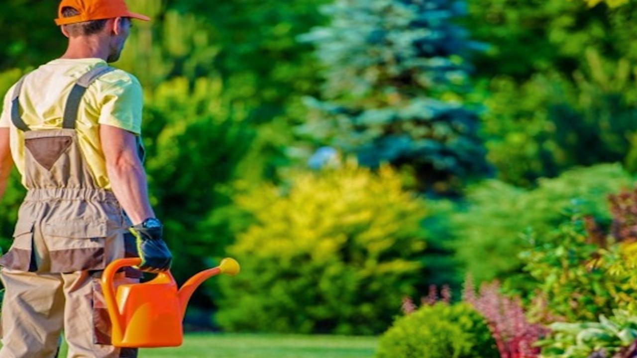 Vacante jardinero en Canadá - SNE Morelos