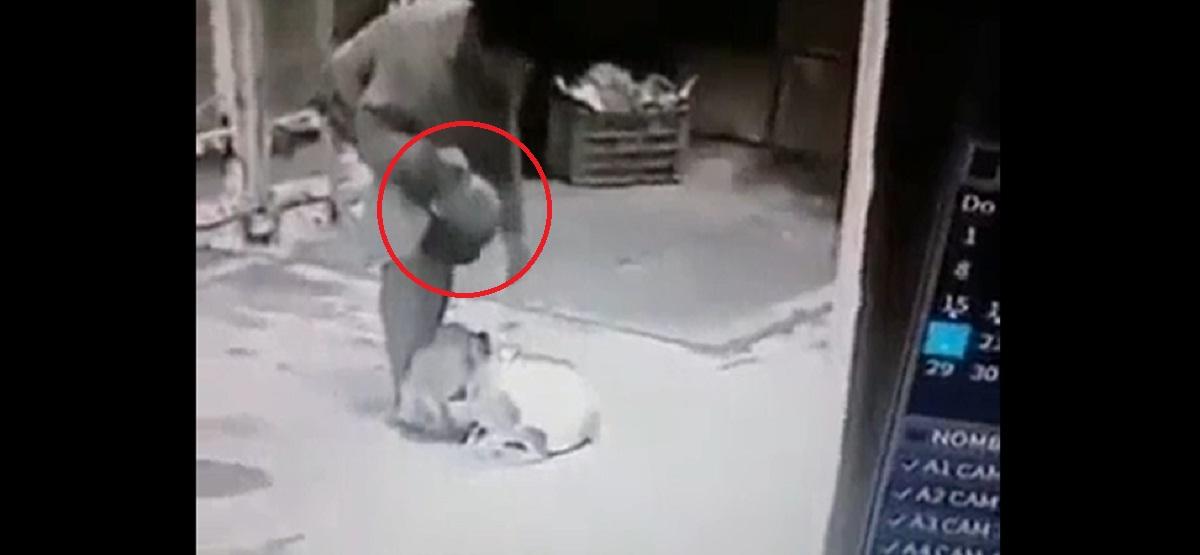 Escalofriante hallazgo capturado en video Hombre es detenido cuando caminaba con una cabeza humana guardada en una mochila