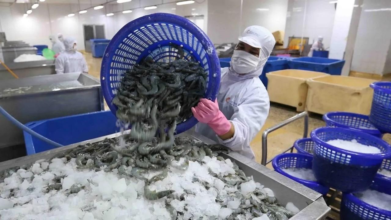¿Quieres trabajar en Canadá y tienes experiencia en el sector de pescadería y mariscos? el SNE Morelos trae vacantes disponibles